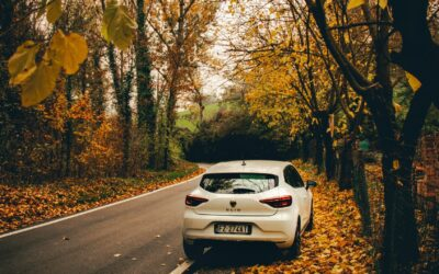 Renault Clio – en forførende og innovativ bil
